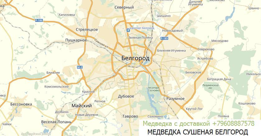 медведка купить Белгород