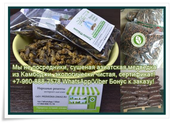 купить медведку южно сахалинск