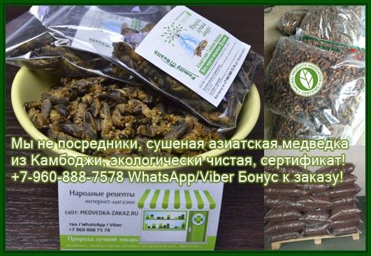 купить медведку петропавловск камчатский